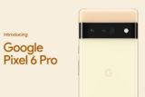 pixel 6 pro google